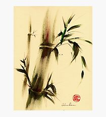 """Calm""  Sumi Sumie bamboo painting Photographic Print"