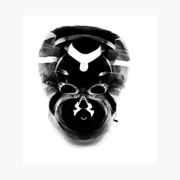 African mask Photographic Print