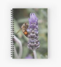 Spring feast Spiral Notebook
