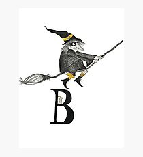 Broomstick Photographic Print