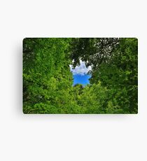 Star in the Sky Canvas Print