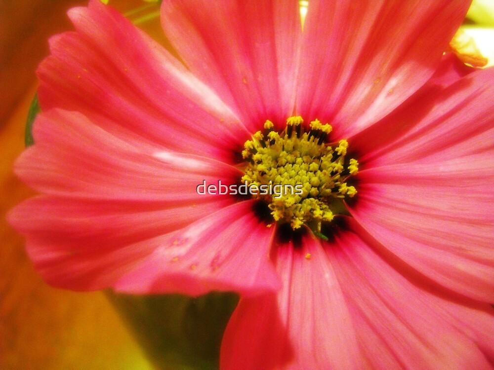 Pink Flower by debsdesigns