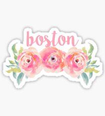 Boston University/Boston College Sticker
