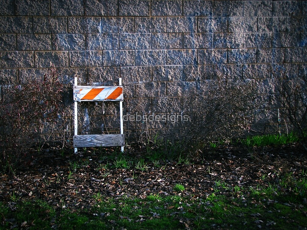 Wall - Bidwell Park by debsdesigns