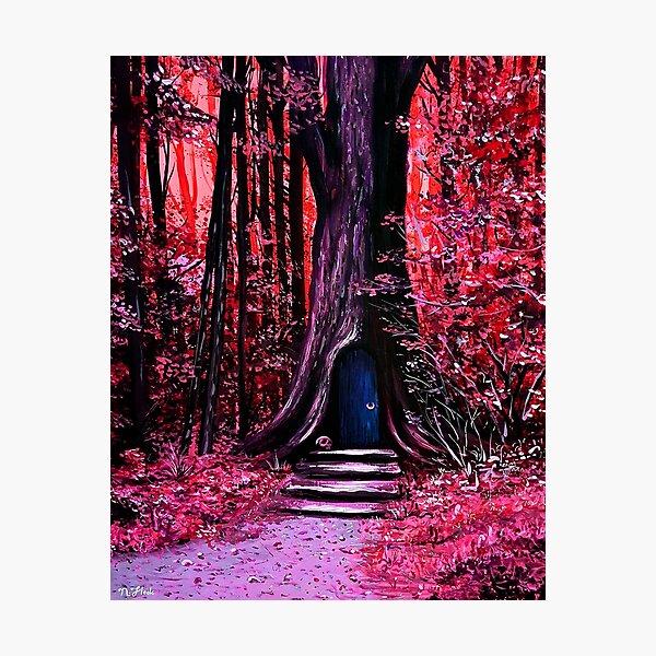 Closed Season Photographic Print