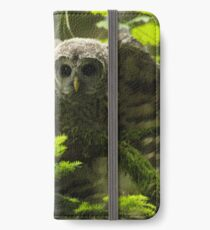 Barred Owlet  iPhone Wallet