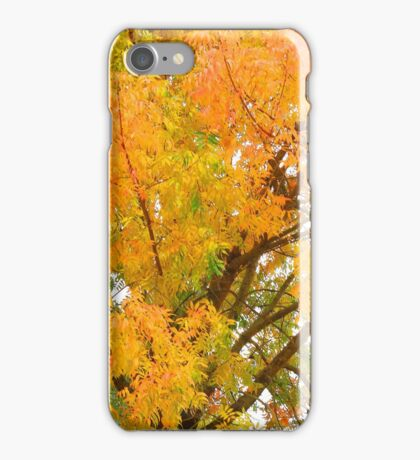 Up In The Tree iPhone Case/Skin