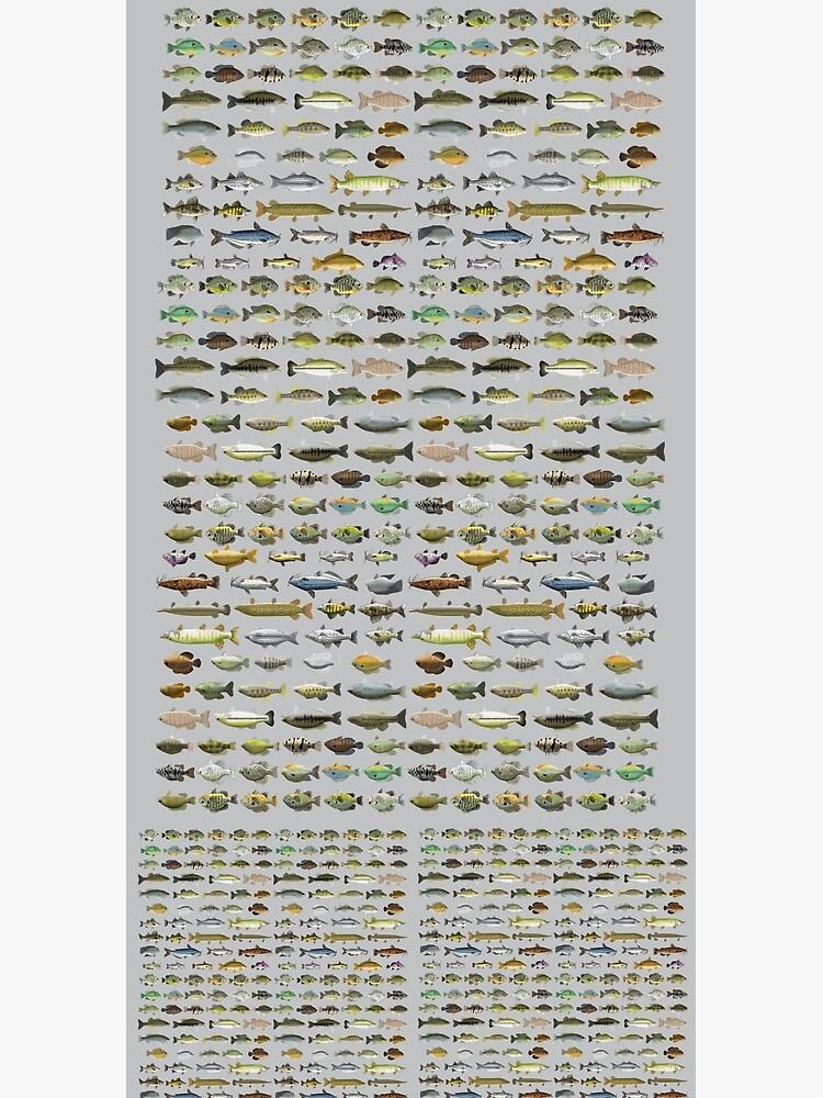 North American Freshwater Fish Group by fishfolkart