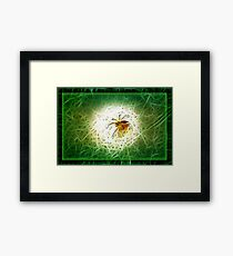 ©BSP Spider Paintography Framed Print