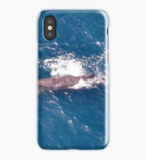 Humpback Whale from the air iPhone Case/Skin