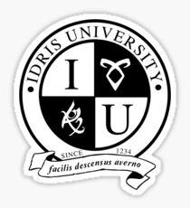 Idris University (transparent rune ver.) Sticker