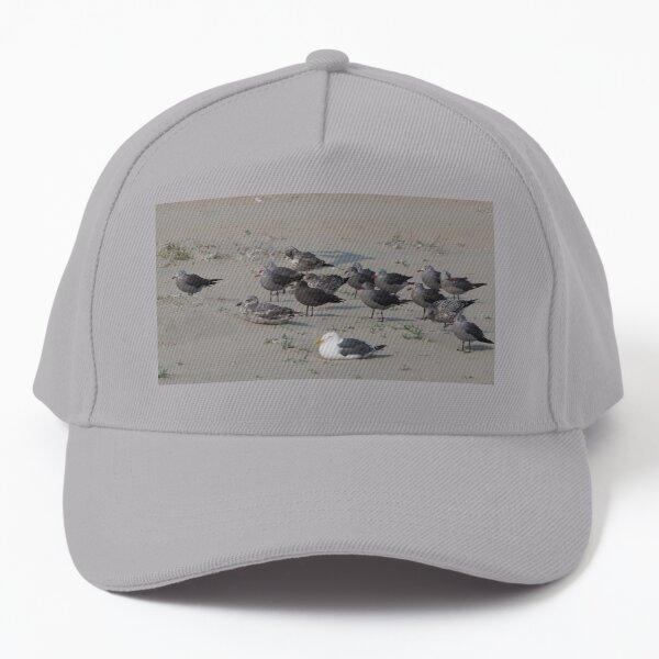 A Flock of Seagulls Baseball Cap