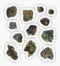 420 Twelve Pack Sticker