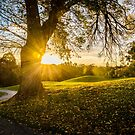 Sunset, Ivanhoe Golf Course by prbimages