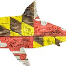 Maryland Shark by Statepallets
