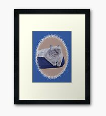 Bayou - A Portrait of a Himalayan Cat  Framed Print