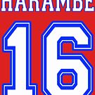 Harambe 16 by Thelittlelord