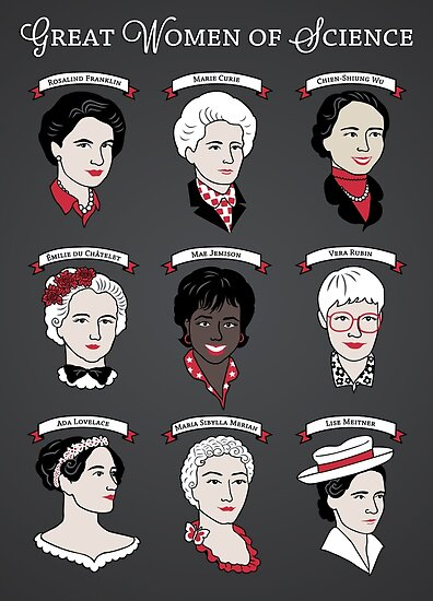 Quot Great Women Of Science Set Quot Poster By Geeksweetie