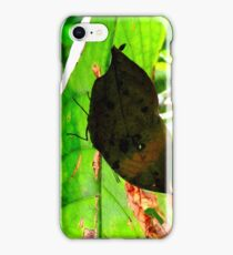 Clever Disguise iPhone Case/Skin