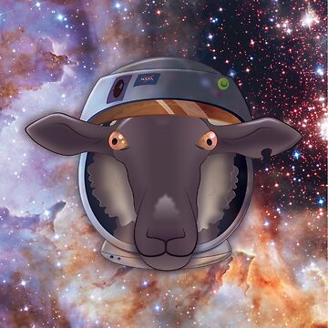 Space Sheep by vectorus