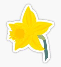 Daffodil, Daffodil Sticker