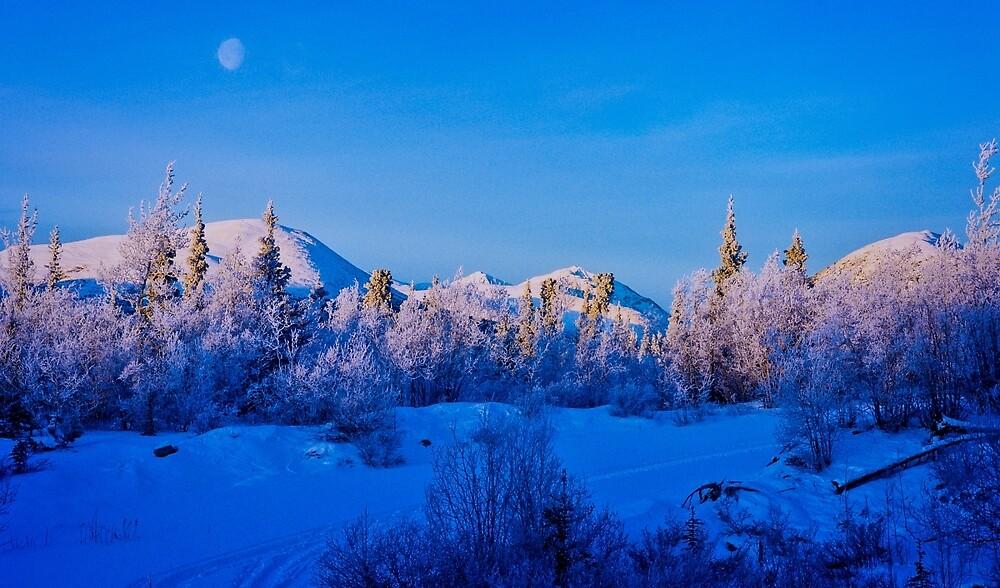Early Morning on Fish Lake Road by Yukondick