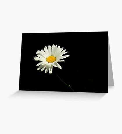 Botanical Simplicity ~ Part One Greeting Card