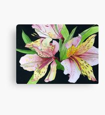 Pink and Yellow Lilies Canvas Print