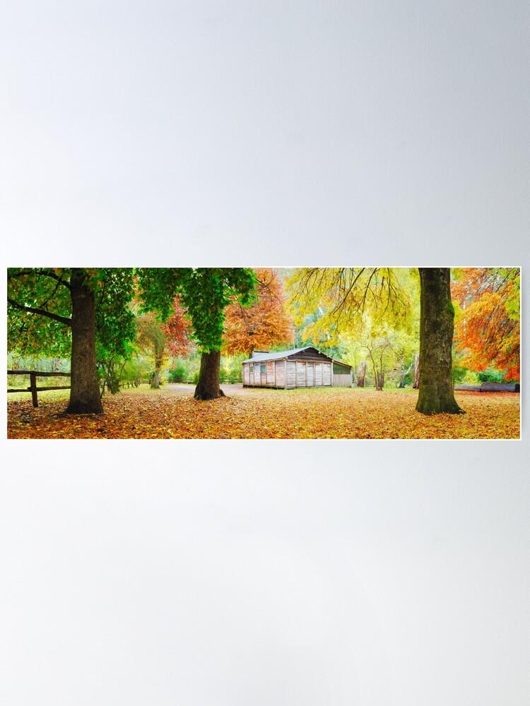 Alternate view of Pickerings Hut, Howqua Hills, Victoria, Australia Poster