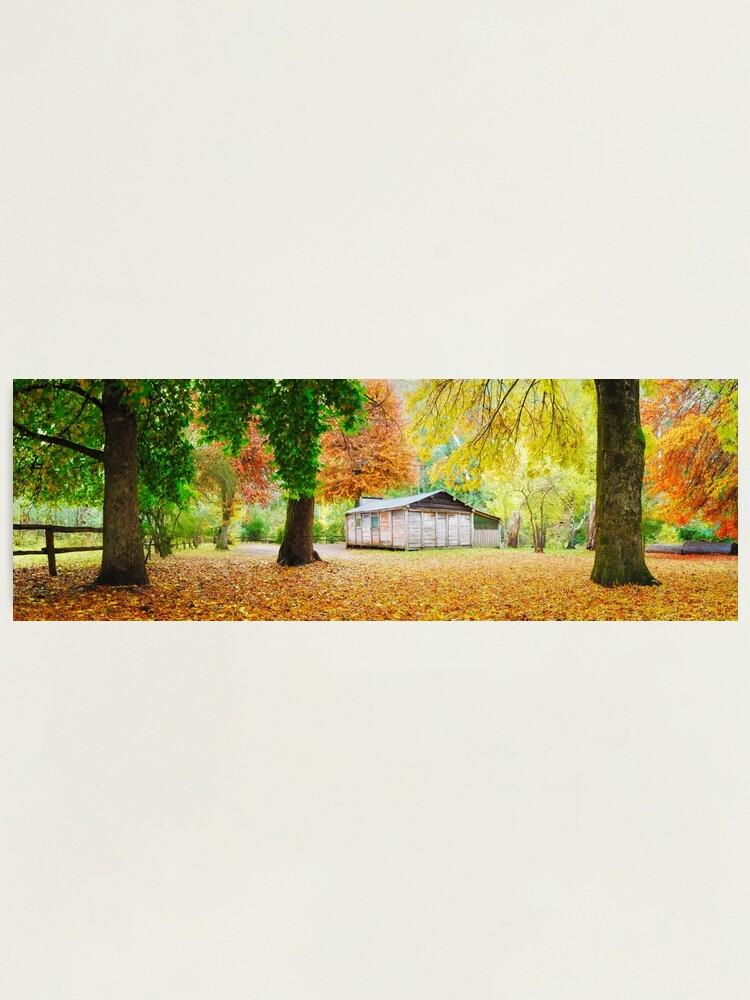 Alternate view of Pickerings Hut, Howqua Hills, Victoria, Australia Photographic Print