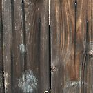 Wood Fence Digital Look A Likes by Delights