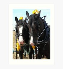 Heavy Horses Art Print