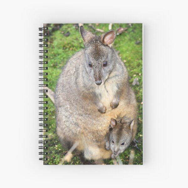 Pademelon Spiral Notebook