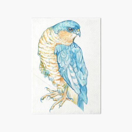 Sparrowhawk Art Board Print
