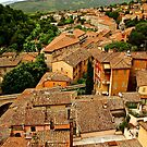 Rooftops of Perugia by Barbara  Brown