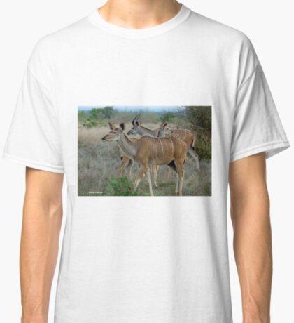 AS GRACEFUL - THE FEMALE KUDU - Tragelaphus strepsiceros Classic T-Shirt