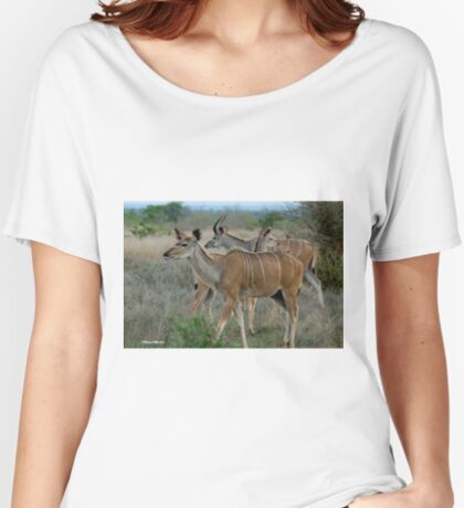 AS GRACEFUL - THE FEMALE KUDU - Tragelaphus strepsiceros Women's Relaxed Fit T-Shirt