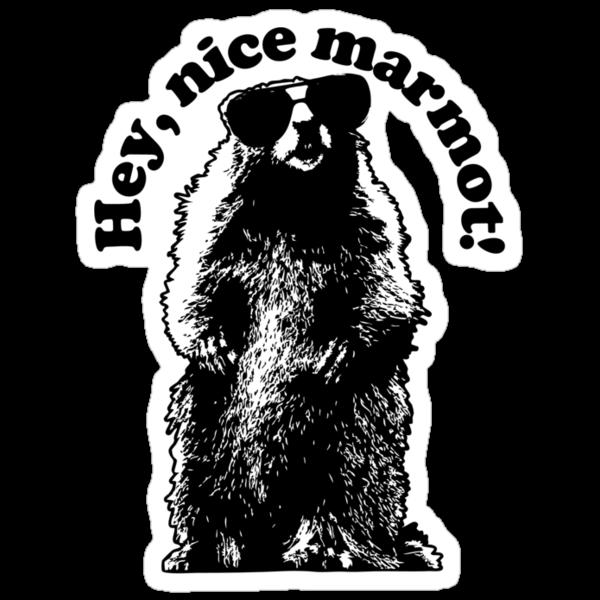 Hey, Nice Marmot! by synaptyx