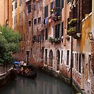 VeniceTourists by Larry Costales