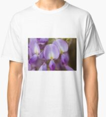wisteria blooming Classic T-Shirt