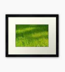 Grass. Framed Print