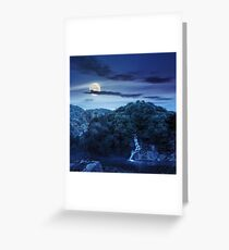 forest waterfall on hill in fog at night Greeting Card