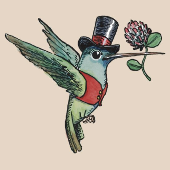 TShirtGifter presents: Dapper Hummingbird | Women's T-Shirt
