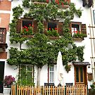Pears grows on the house in Hallstatt by mike2048