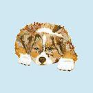 Red Merle Australian Shepherd Puppy by Barbara Applegate