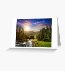 Mountain river in pine forest at sunset Greeting Card