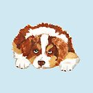 Red Tri Australian Shepherd Puppy by Barbara Applegate