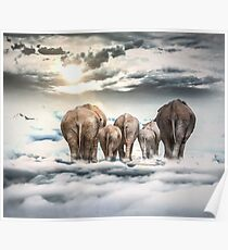 Elephants and Babys Poster