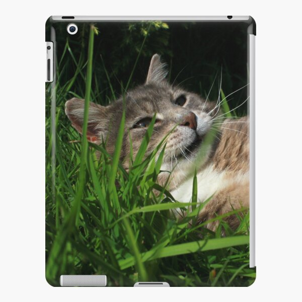 Tabby cat playing with toy mouse iPad Snap Case