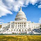 The Capitol by FelipeLodi